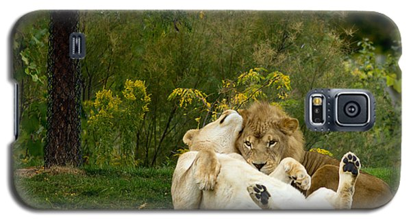 Lions In Love Galaxy S5 Case
