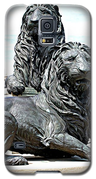 Lions Of Marco Island Galaxy S5 Case