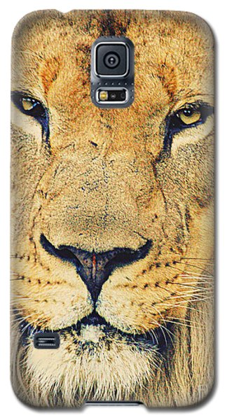 Galaxy S5 Case featuring the photograph Lion's Stare by Ruth Jolly