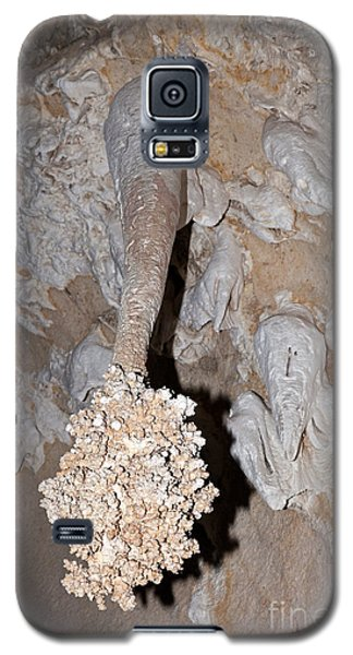 Lions Tail Carlsbad Caverns National Park Galaxy S5 Case
