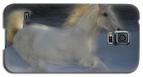 White Horse Galaxy S5 Case - Lipicanka by Milan Malovrh