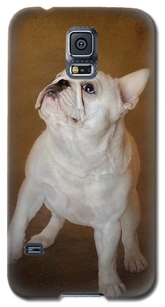 Little Beggar - White French Bulldog Galaxy S5 Case