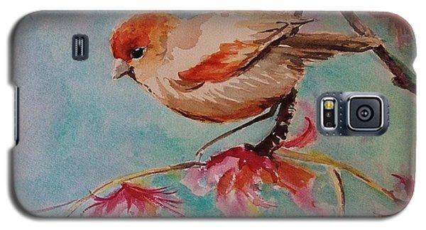 Little Bird  Galaxy S5 Case