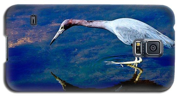 Little Blue Heron Fishing Galaxy S5 Case