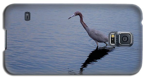 Galaxy S5 Case featuring the photograph Little Blue Heron On The Hunt by John M Bailey