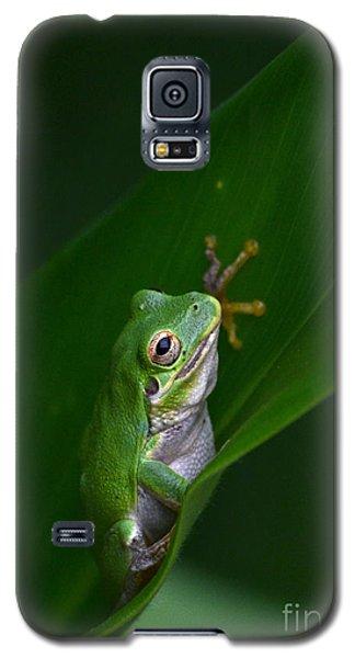 Little Chubby Galaxy S5 Case