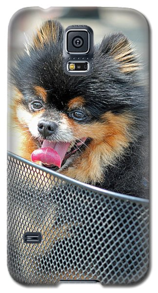 Galaxy S5 Case featuring the photograph Little Companion by E Faithe Lester