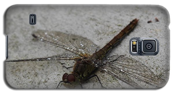 Little Dragonfly Galaxy S5 Case