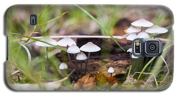 Galaxy S5 Case featuring the photograph Little Fungi by David Isaacson