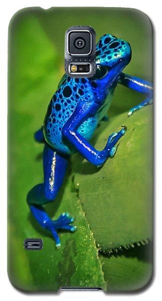 Little Garden Friend Galaxy S5 Case