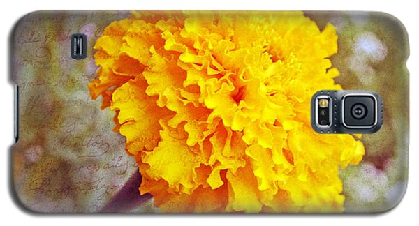 Galaxy S5 Case featuring the photograph Little Golden  Marigold by Kay Novy