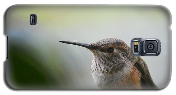 Galaxy S5 Case featuring the photograph Little Hummer At My Window by Ronda Broatch