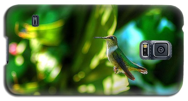 Galaxy S5 Case featuring the photograph Little Humming Bird by Ed Roberts