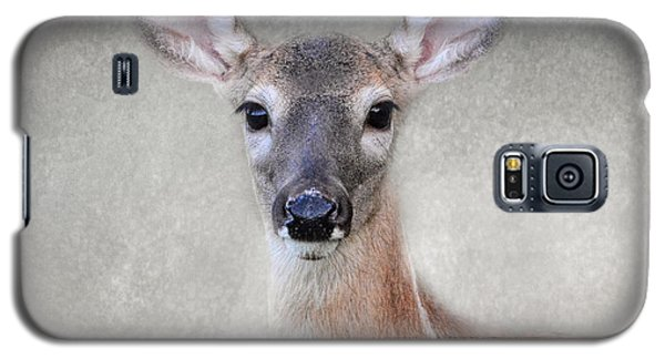 Little Miss Lashes - White Tailed Deer - Fawn Galaxy S5 Case