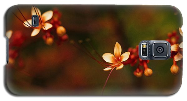 Little Red Flowers Galaxy S5 Case
