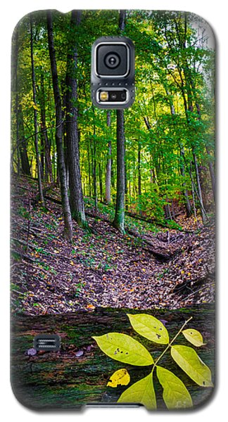 Little Valley Galaxy S5 Case