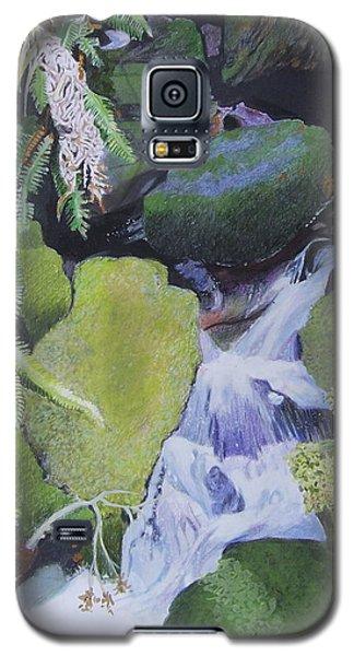 Small Waterfall Galaxy S5 Case