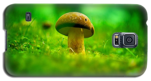 Little Wild Mushroom On A Green Forest Patch Galaxy S5 Case