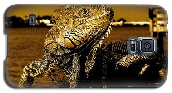 Lizard Sunbathing In Miami II Galaxy S5 Case