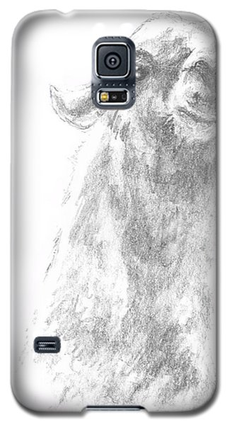 Llama Close Up Galaxy S5 Case