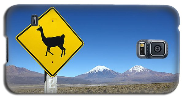 Llamas Crossing Sign Galaxy S5 Case