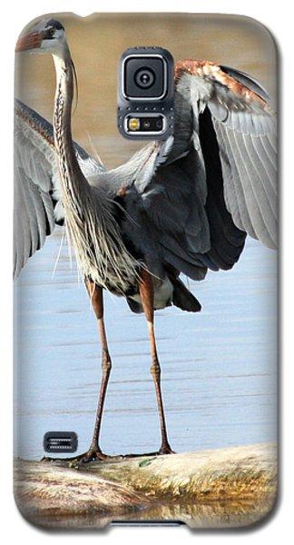 Log Hog Galaxy S5 Case