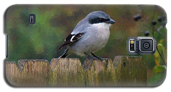 Loggerhead Shrike On Garden Fence Galaxy S5 Case