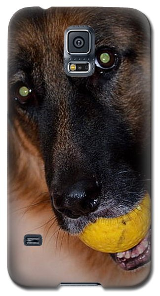 Galaxy S5 Case featuring the photograph Loki by Cathy Shiflett