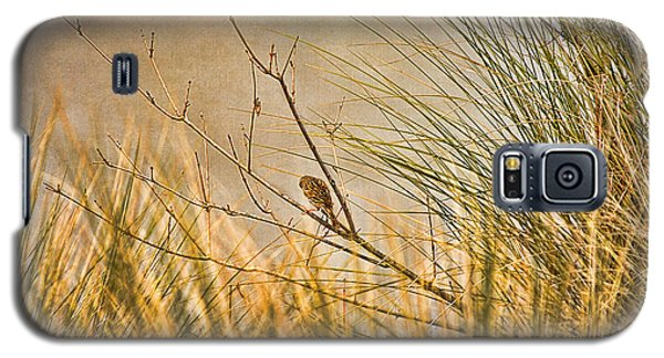 Galaxy S5 Case featuring the photograph Lone Bird by Anne Rodkin