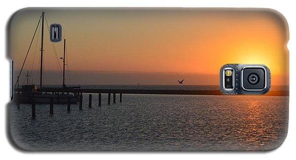 Lone Bird At The Marina Galaxy S5 Case by Leticia Latocki