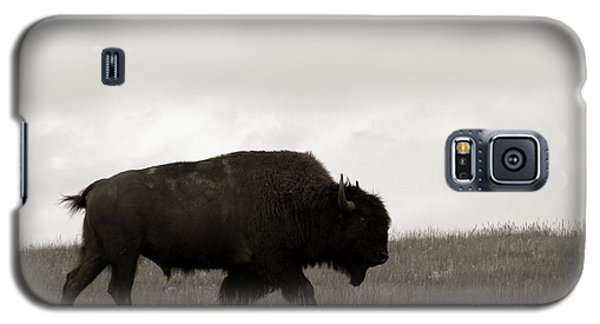 Bison Galaxy S5 Case - Lone Bison by Olivier Le Queinec