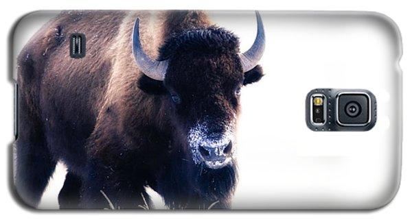 Lone Bull Galaxy S5 Case