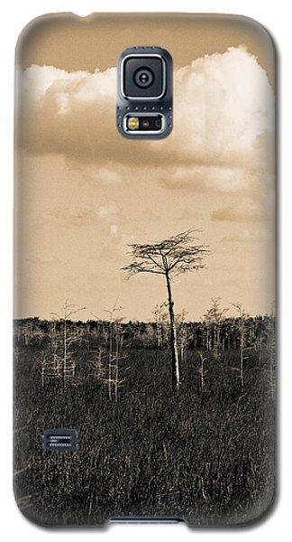 lone cypress III Galaxy S5 Case