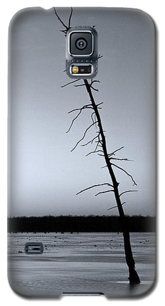 Galaxy S5 Case featuring the photograph Lone Cypress by Jane Eleanor Nicholas