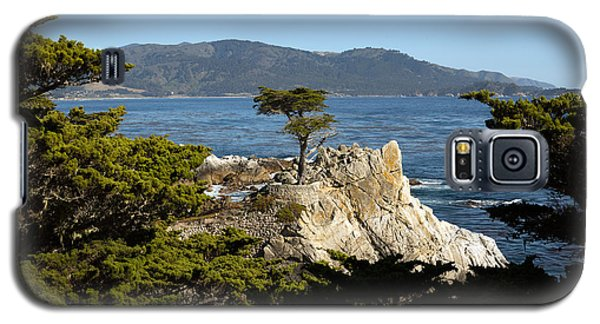 Lone Cypress On 17-mile Drive  Galaxy S5 Case