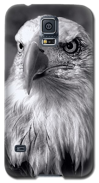 Galaxy S5 Case featuring the photograph Lone Eagle by Adam Olsen