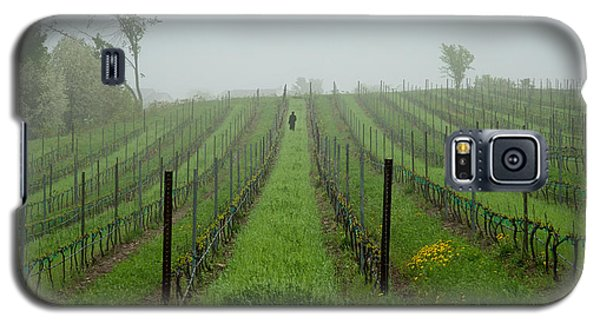 Lone Figure In Vineyard In The Rain On The Mission Peninsula Michigan Galaxy S5 Case