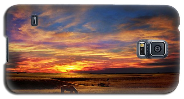 Lone Horse Greenwood County Galaxy S5 Case by Rod Seel