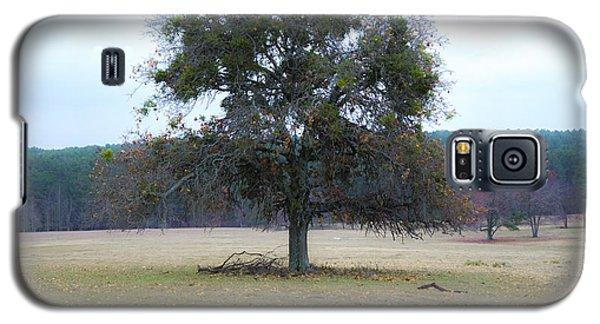Lone Oak In Pasture Galaxy S5 Case