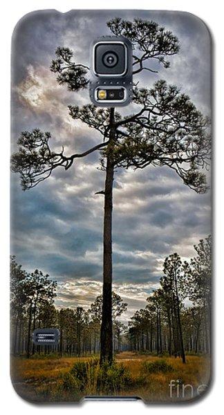 Lone Pine Galaxy S5 Case by Henry Kowalski