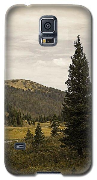 Lone Pine Galaxy S5 Case by Wayne Meyer