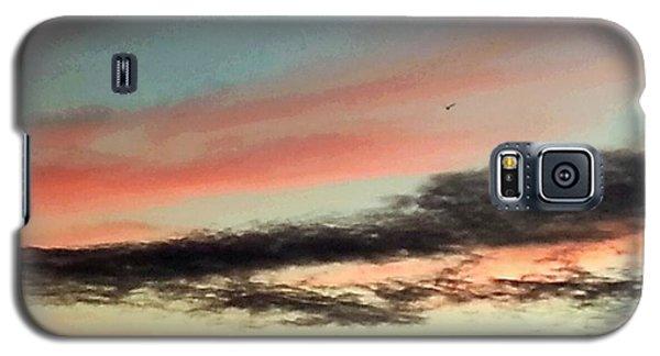 Lone Seagull Galaxy S5 Case
