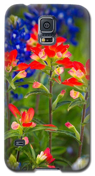 Lone Star Blooms Galaxy S5 Case