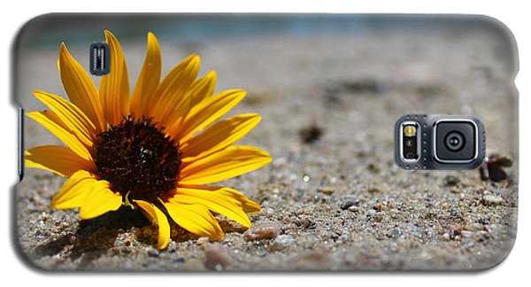 Lone Sunflower Galaxy S5 Case