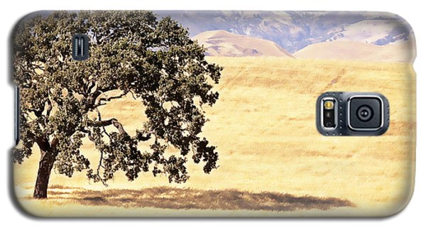 Lone Tree Galaxy S5 Case by Caitlyn  Grasso