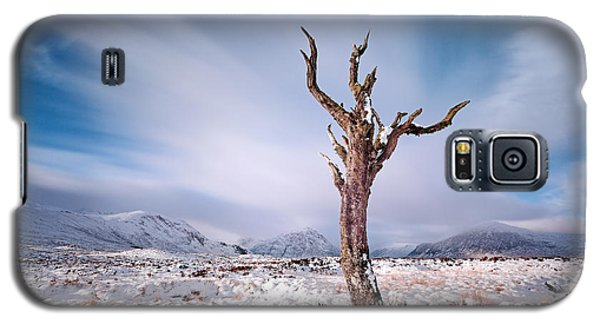 Lone Tree In The Snow Galaxy S5 Case