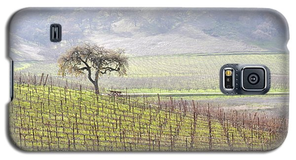 Galaxy S5 Case featuring the photograph Lone Tree In The Vineyard by AJ  Schibig
