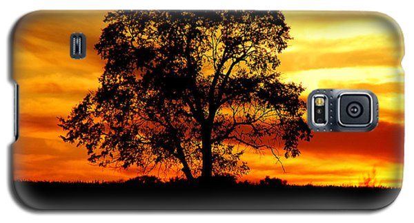 Galaxy S5 Case featuring the photograph Lone Tree by Mary Carol Story