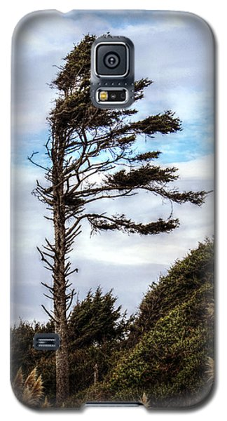 Galaxy S5 Case featuring the photograph Lone Tree by Melanie Lankford Photography