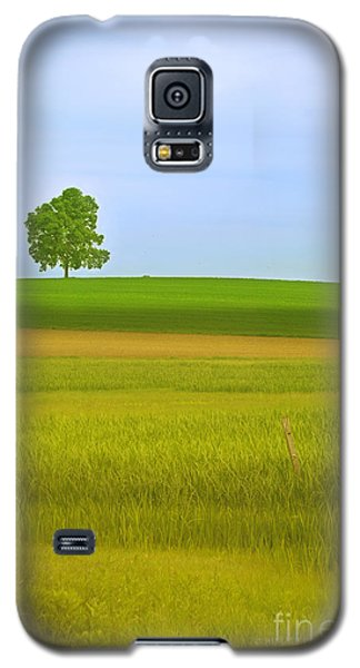 Lone Tree Galaxy S5 Case by Rima Biswas
